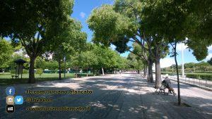 Lisbona - 2014 - Foto n. 0028
