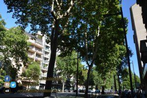 Milano - in giro per la città