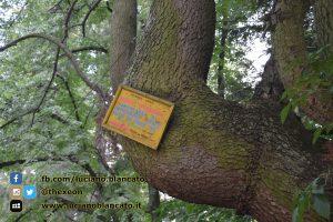 copy_10_Bucarest - Dimitrie Ghica Park - Parcul Dimitrie Ghica