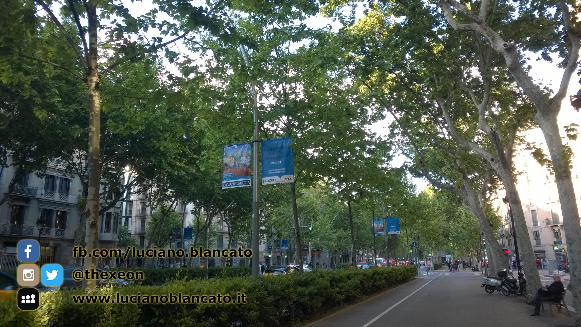 W1 Vueling a Barcellona - 2014 - foto n 0010