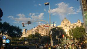 W1 Vueling a Barcellona - 2014 - foto n 0011