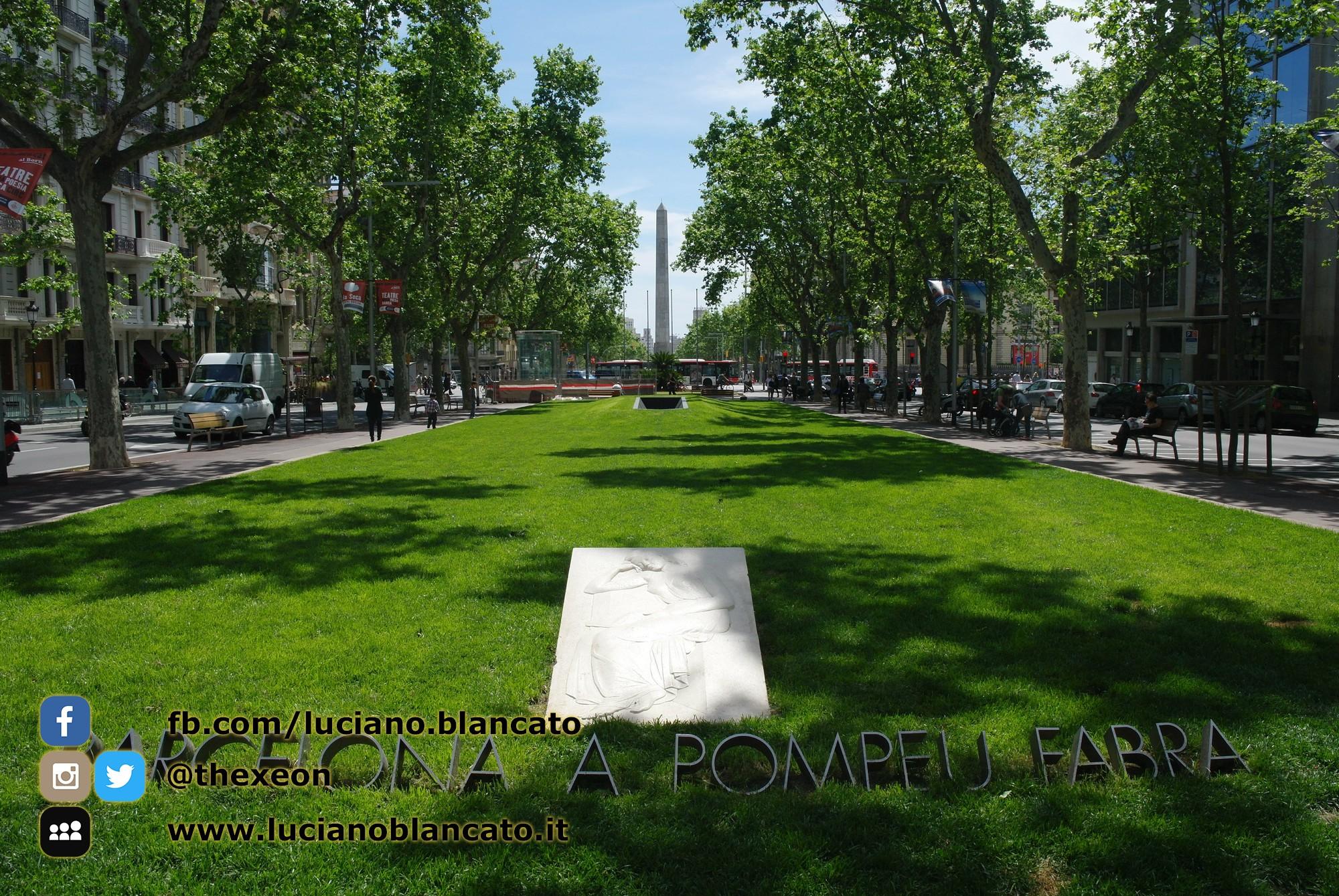 W1 Vueling a Barcellona - 2014 - foto n 0122