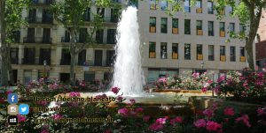 W1 Vueling a Barcellona - 2014 - foto n 0124