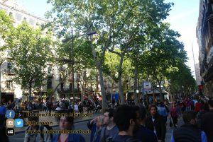 W1 Vueling a Barcellona - 2014 - foto n 0144