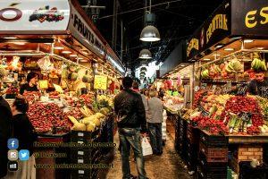 W1 Vueling a Barcellona - 2014 - foto n 0191