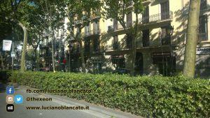 W1 Vueling a Barcellona - 2014 - foto n 0233