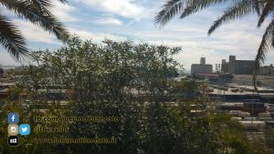 W1 Vueling a Barcellona - 2014 - foto n 0301