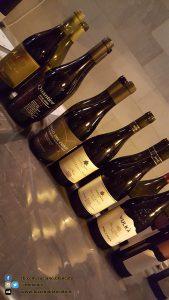 copy_5_ViniMilo 37a edizione - Bottiglie di vino