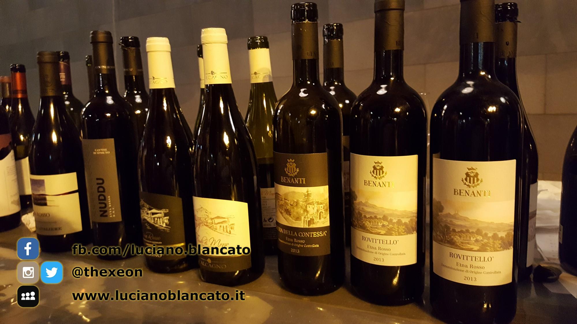 copy_ViniMilo 37a edizione - Bottiglie di vino