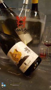 copy_1_ViniMilo 37a edizione - Bottiglie di vino