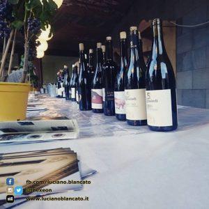 copy_6_ViniMilo 37a edizione - Bottiglie di vino