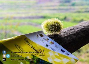 ViniMilo 37a edizione - Flyer evento