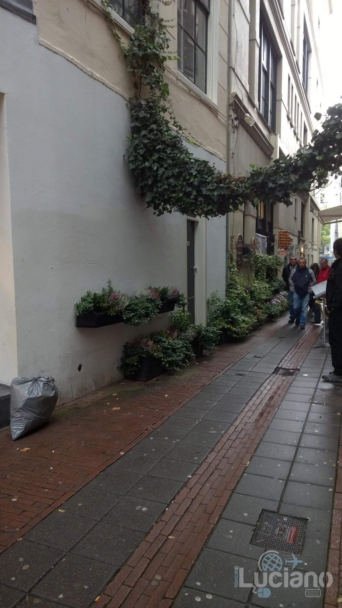 amsterdam-2014-vueling-lucianoblancatoit (157)
