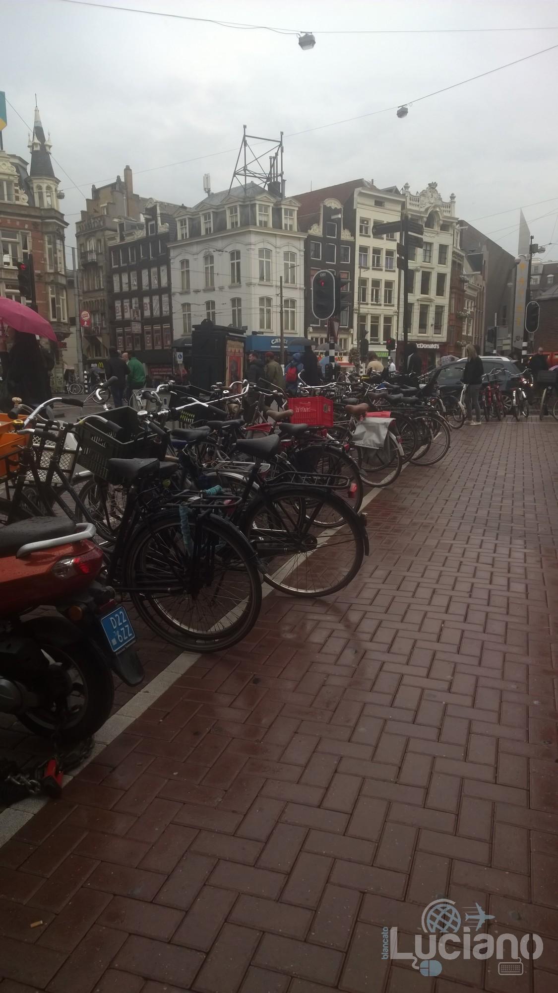 amsterdam-2014-vueling-lucianoblancatoit (161)