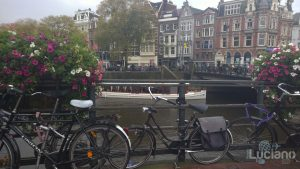 amsterdam-2014-vueling-lucianoblancatoit (162)