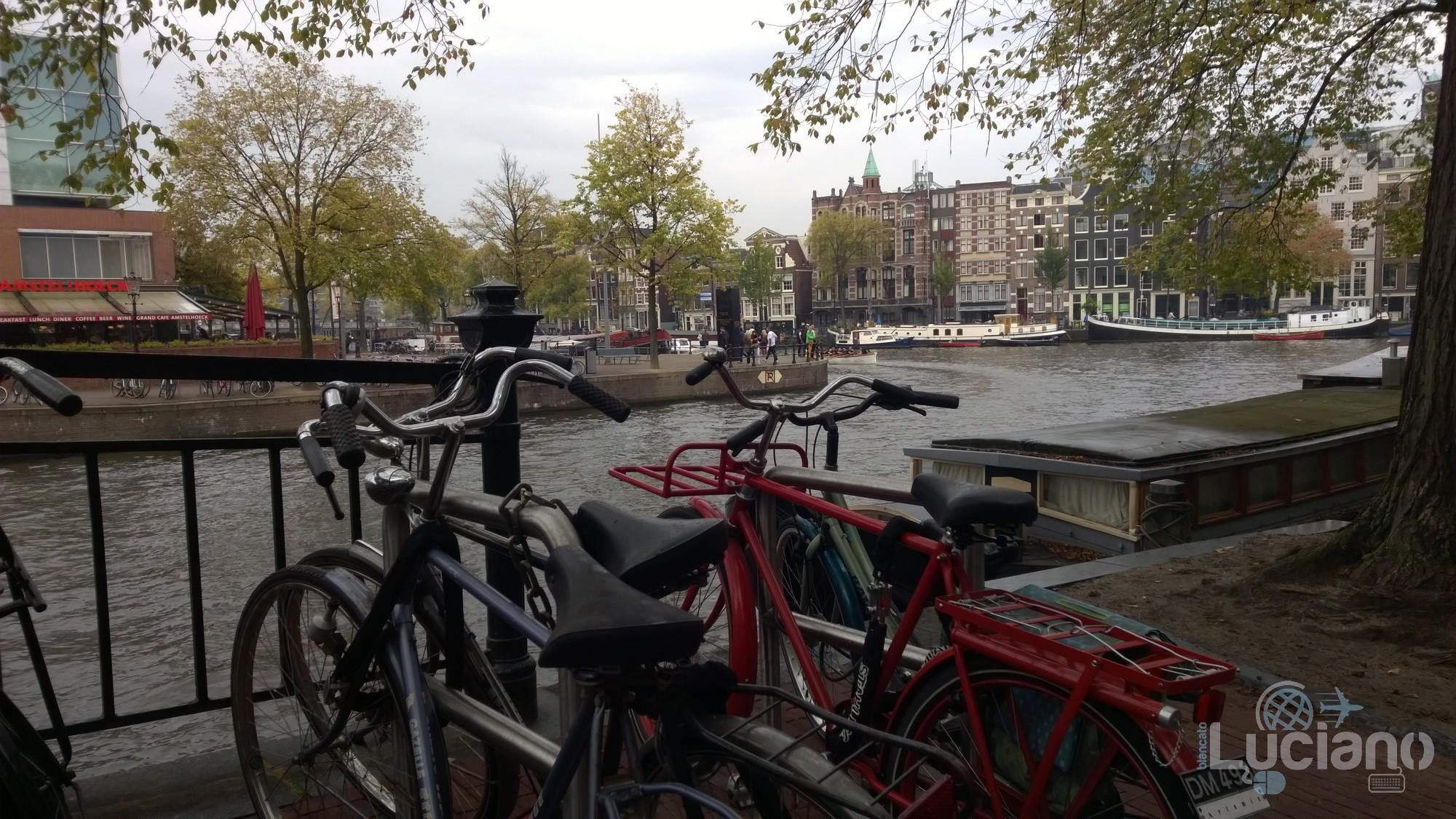 amsterdam-2014-vueling-lucianoblancatoit (177)