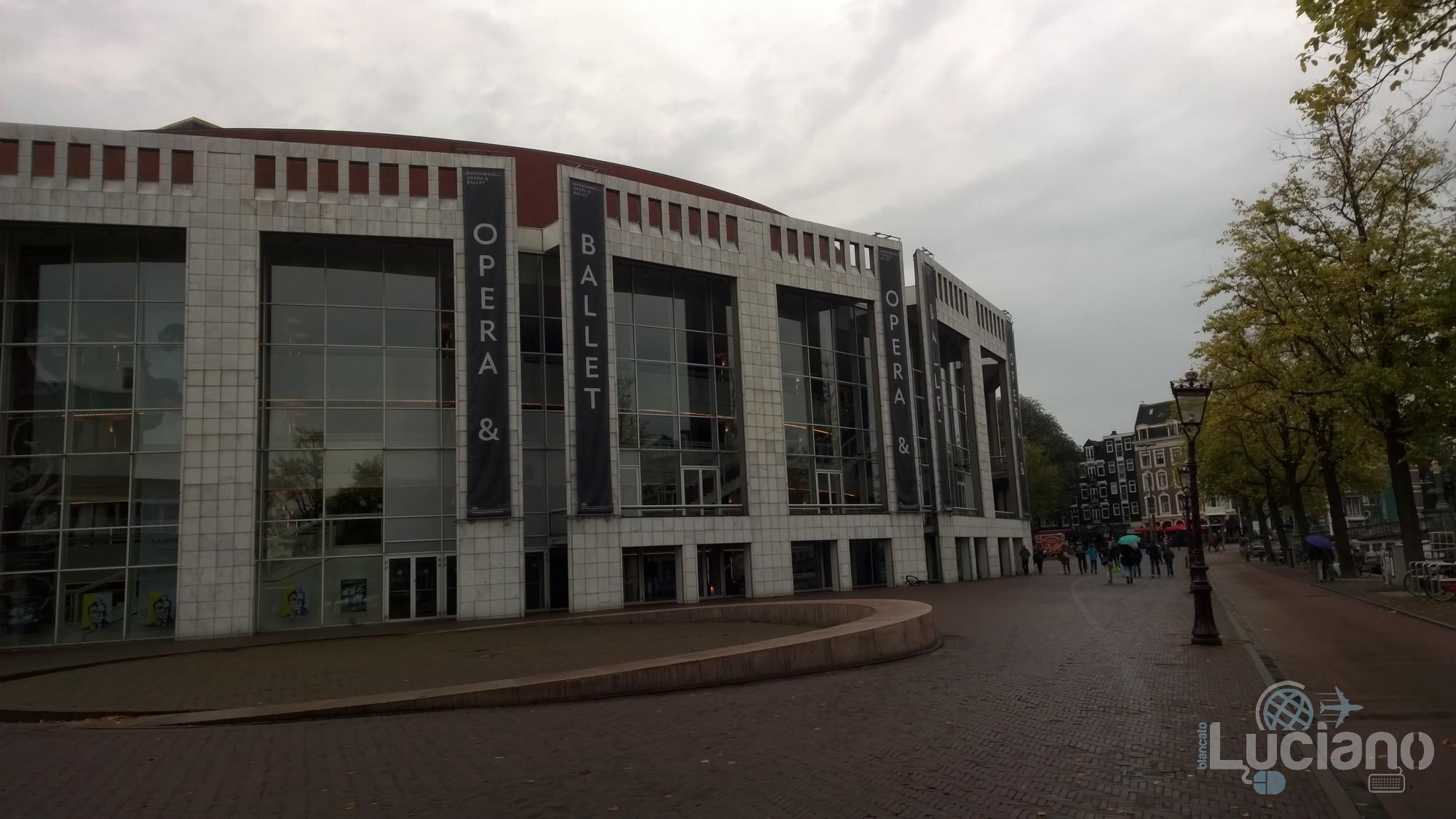 amsterdam-2014-vueling-lucianoblancatoit (179)