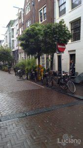 amsterdam-2014-vueling-lucianoblancatoit (186)
