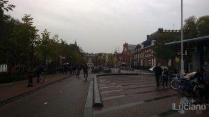 amsterdam-2014-vueling-lucianoblancatoit (191)