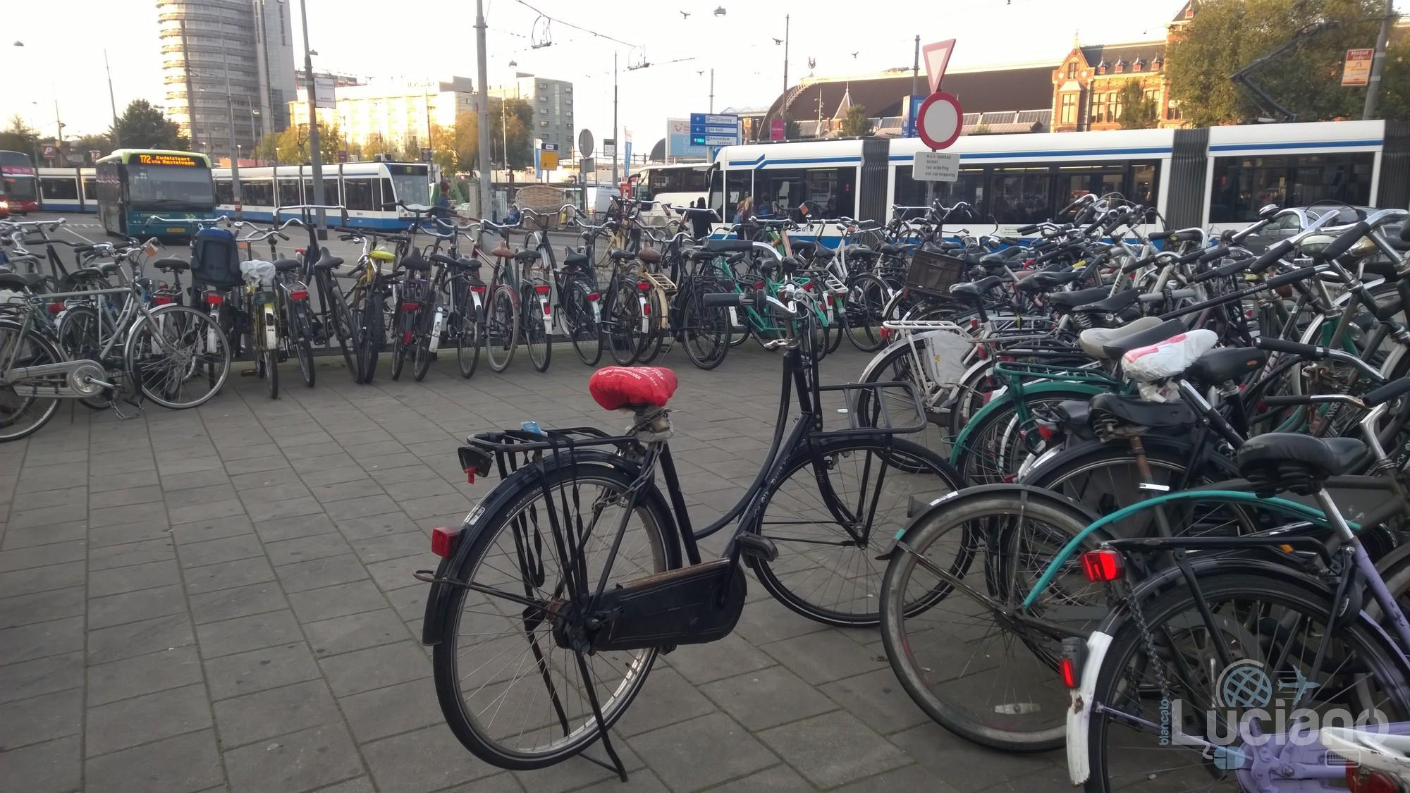 amsterdam-2014-vueling-lucianoblancatoit (20)