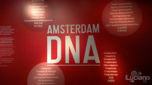 amsterdam-2014-vueling-lucianoblancatoit (81)