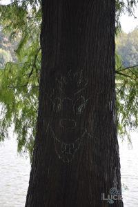 strani disegni sugli alberi! :-)