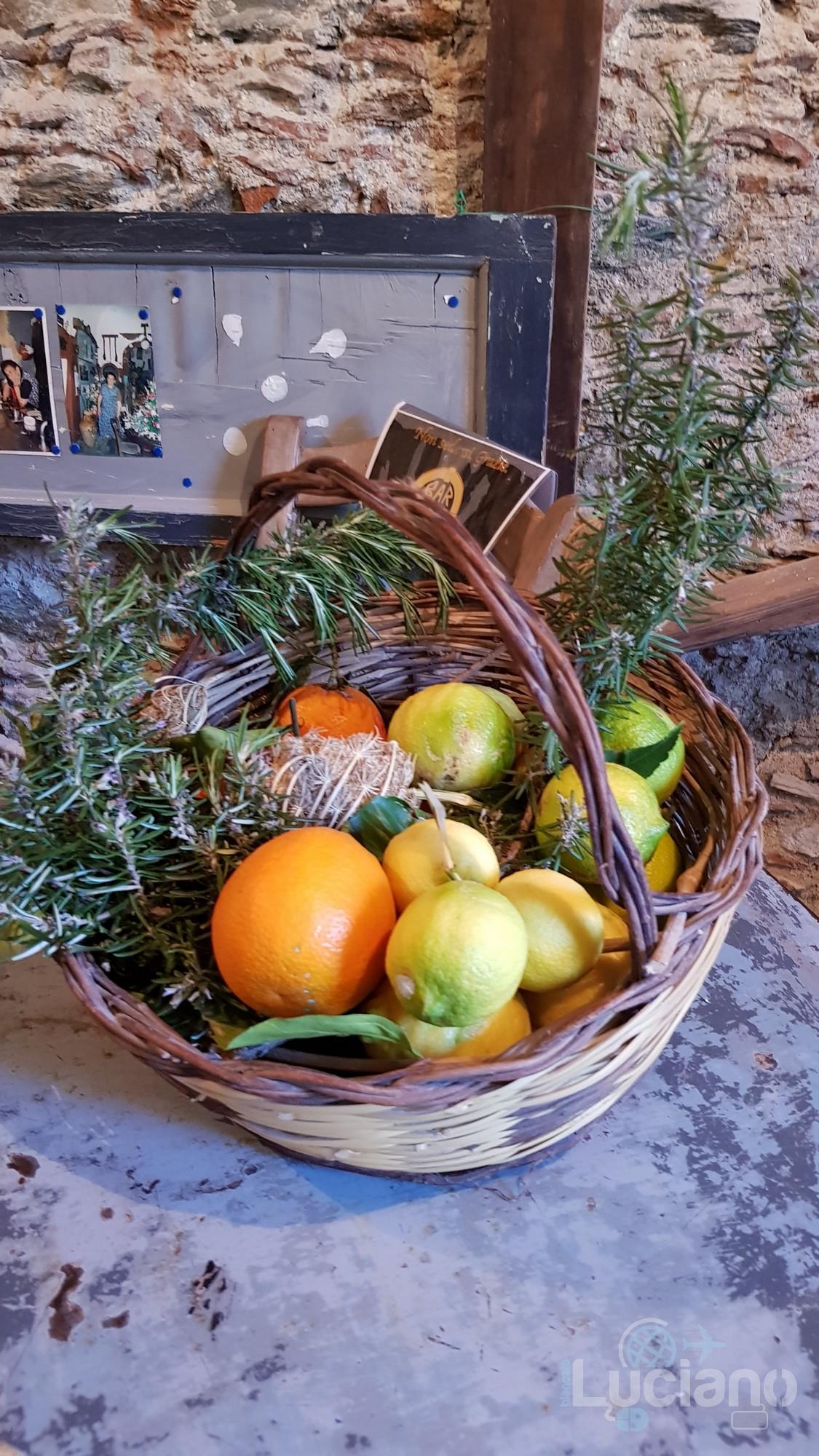 panaru agrumi - cesto con agrumi