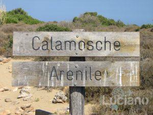 Spiaggia di Calamosche - Arenile - SR
