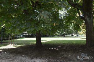 Milano, parco sempione - Lombardia - Italia