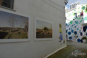 arte per le vie del per le vie del Farm Cultural Park a Favara (AG)