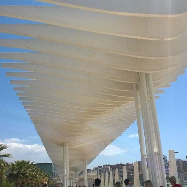 Freedom#thexeon #italianblogger #travelinfluencer #travel #catania #italy #malaga #spain #italianinfluencer #instatravel #travelgram #ilovetravel #ig_europa #beautifuldestinations #travelworld #photoofday #skyporn #relaxing #tramonto #nature_shooters #naturelovers #instapassport #tasteintravel #lonelyplanet #travelpics #amazingview #bestoftheday #cloudporn - from Instagram