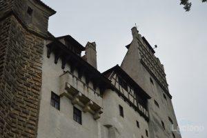 castello-di-dracula-castello-di-bran-luciano-blancato (15)