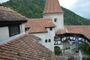 castello-di-dracula-castello-di-bran-luciano-blancato (62)