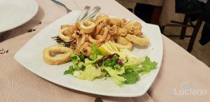 Trattoria Catania Ruffiana - Frittura di Calamari