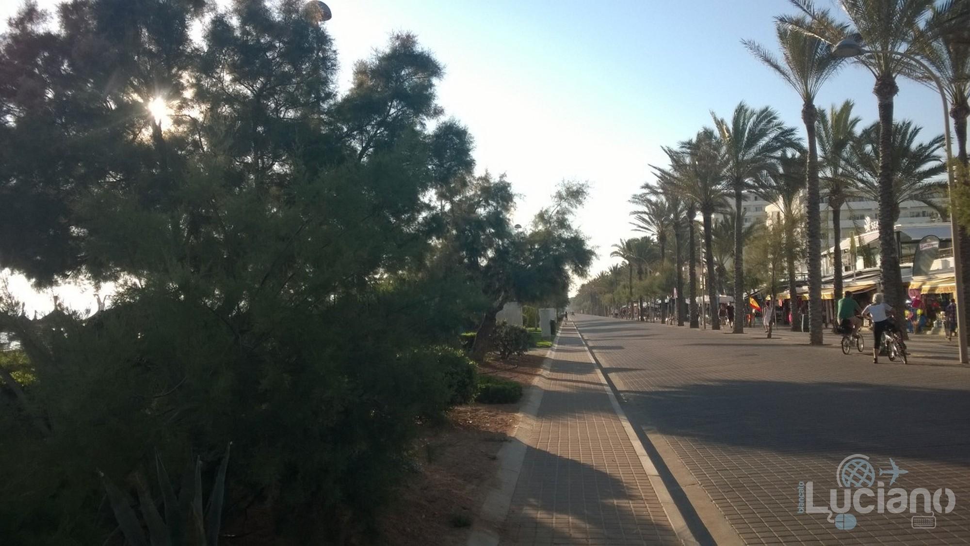 Palma de Maiorca