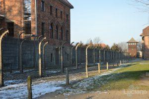 Auschwitz Memorial Museum - Poland